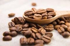 Beaucoup de grains de café rôtis dans la cuillère Image libre de droits