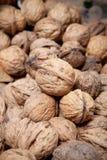 Beaucoup de noix sèches Image libre de droits