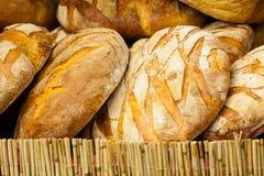 Beaucoup de pains frais rustiques bruns de pain de seigle Photos stock