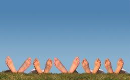 Beaucoup de pattes sur le collage d'herbe Photographie stock libre de droits