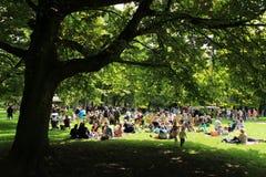 Beaucoup de personnes en parc pour l'événement de musique dans la ville Rotterdam pendant l'été Image libre de droits