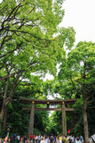 Beaucoup de personnes marchent par Torii (porte) dans le secteur de vieux temple, Japon Images stock
