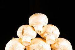 Beaucoup de petits champignons de paris blancs non épluchés crus Photos libres de droits