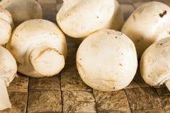 Beaucoup de petits champignons de paris blancs non épluchés crus Photos stock