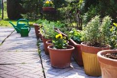 Beaucoup de pots de fleur comme décoration dans le jardin Photographie stock