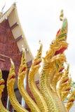 Beaucoup de têtes de dragon Image stock