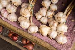 Beaucoup de têtes du séchage d'ail dans une boîte en bois Image libre de droits