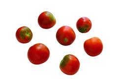 Beaucoup de tomates rouges mûres Image libre de droits