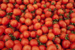 Beaucoup de tomates rouges mûres Photographie stock