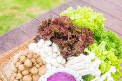 Beaucoup de types de légumes dans un panier Image libre de droits