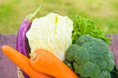 Beaucoup de types de légumes dans un panier Images libres de droits