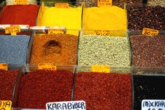 Beaucoup de types de poivre et d'autres épices dans des récipients aiment des vases dans le bazar grand, Istanbul, Turquie Images libres de droits