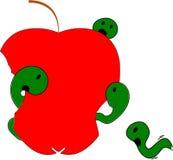 Beaucoup de vers dévorent une pomme jusqu'à ce qu'il n'y ait rien laissé/métaphore pour des sources épuisées Image stock