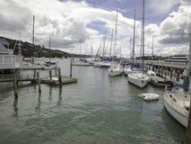 Beaucoup de yachts dans le port Image libre de droits