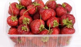Beaucoup fraise dans le récipient en plastique Photographie stock libre de droits