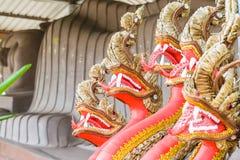 Beaucoup ont dirigé le plan rapproché de Naga Photo libre de droits