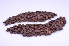 Beaucoup peu de maïs de café Photographie stock