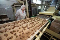 Beaucoup production massive de gâteau d'usine douce de nourriture Images libres de droits