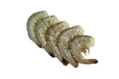 Beaucoup rangée crue du Roi Shrimps Laying In d'isolement sur le blanc photographie stock