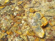 Beaucoup roche jaune, en mer Photos stock