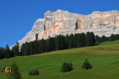 Beauful scene in Dolomites, Alta Badia, green hills with fir and larch Royalty Free Stock Image