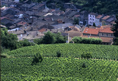 Beaujolais foto de stock royalty free