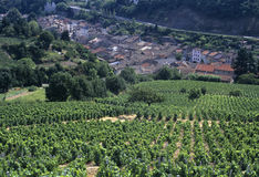 Beaujolais Royalty Free Stock Photos