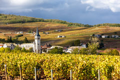 Beaujolais, Rhone-Alpes, France Stock Image
