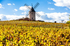 Beaujolais, Rhone-Alpes, France Stock Photos