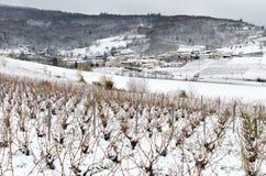 Beaujolaiswijngaard en dorp onder sneeuw stock foto