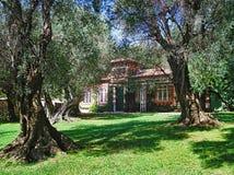 Beaulieu-sur-Mer, jardín verde oliva de Francia en la calle de Jean Bracco Imagen de archivo