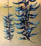 Beaultiful hängende Jade Lizenzfreie Stockfotos