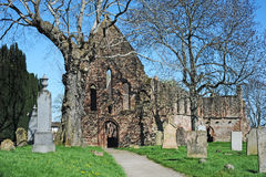 Beauly Priory. The ruins of Beauly Priory established in 1230 and  which was a Cistercian monastic community from around 1510 Royalty Free Stock Photos