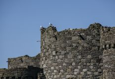 Beaumaris, Ουαλία - το κάστρο στοκ φωτογραφίες με δικαίωμα ελεύθερης χρήσης