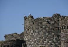 Beaumaris, Gales - o castelo fotos de stock royalty free
