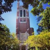 Beaumonttoren stock afbeelding