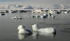 Beauté antarctique Image libre de droits