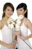 beauté asiatique Image stock