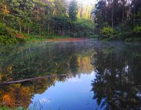Beauté brumeuse du lac macan photo libre de droits