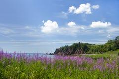 Beauté côtière de province du Nouveau Brunswick dans le Canada Photos stock