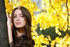 Beauté d'automne image libre de droits