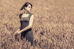 Beauté d'automne dans le champ de maïs avec la robe grise Photos stock