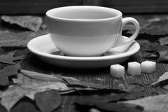 Beauté d'automne et concept de boissons Modèle de feuilles d'automne avec la tasse de café ou de thé Images libres de droits