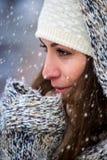 Beauté d'hiver Photographie stock libre de droits
