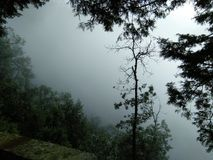Beauté d'Indien de nature Image libre de droits