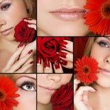 Beauté dans les groupes Photos libres de droits