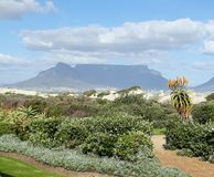 Beauté de Cape Town Photo stock