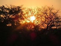 Beauté de coucher du soleil images stock
