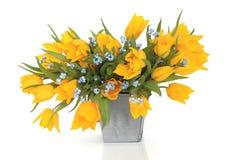 Beauté de fleur de source images stock
