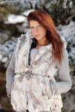 Beauté de l'hiver photographie stock libre de droits